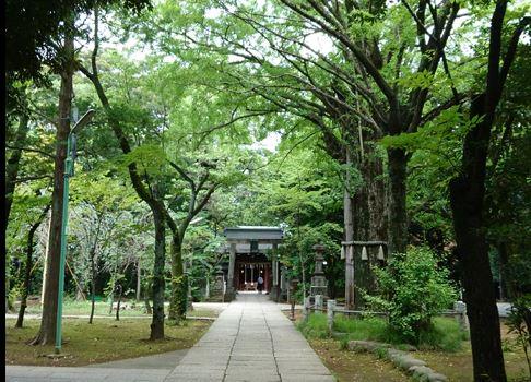 六本木で縁結び祈願!(出雲大社、 天祖神社、赤坂氷川神社)