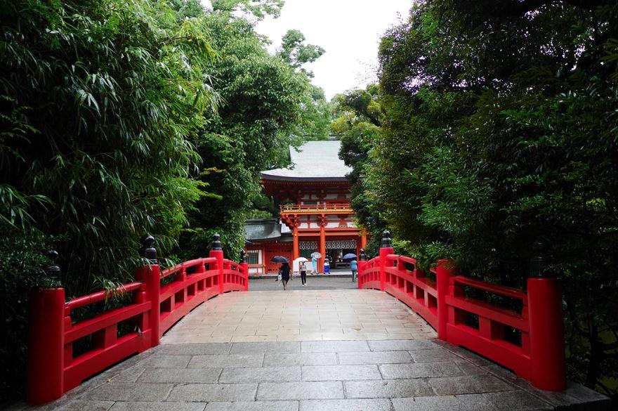 動物も楽しめる!?大宮のパワースポット(氷川神社)